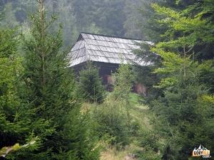 Kurnytowa Koliba