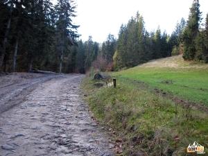 Dlina potoku Frendowskiego