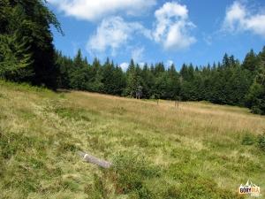 Przełęcz Pańska Przehybka