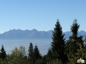 Panorama Tatr z Polany Wyrobek