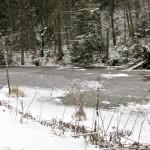 Dolina Kamienicy zimą