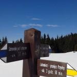 Rozwidlenie szlaków na Hali Turbacz