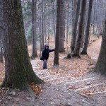 Zejście do Koninek niebieskim szlakiem