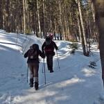 Podejście na Sokolicę 1367 m z Przełęczy Krowiarki 1012 m