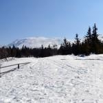Szczyt Babiej Góry 1725 m widziany z Przełęczy Brona 1408 m