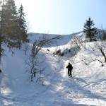 Zejście z Przełęczy Brona na Markowe Szczawiny