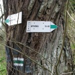 """Wejście do Rezerwatu """"Wąwóz Homole"""""""