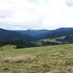 Gorc 1228 m, Polana Bieniowe i Kudłoń 1274 m widziane z Polany Nowej pod Myszycą 877 m