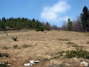 Pozostałości starej bacówki na Polanie Pustki (2009 r)