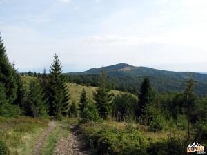 Mogielica 1170 m widziana spod szczytu Jasienia 1062 m