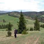 Przełęcz Rozdziela widziana spod Wierchliczki 955 m