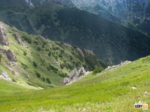Widok w dół Doliny Zadnich Koperszadów
