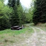 """Na trasie """"Mogielica"""" - stoły przed skrzyżowaniem z żółtym szlakiem Słopnice - Mogielica"""