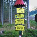 Początek zielonego szlaku łącznikowego na Sindlovec