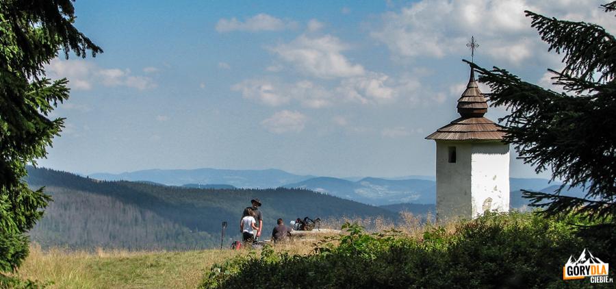 Na polanie Jaworzyna Kamienicka przy Bulandowej Kapliczce