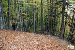 Żółty szlak wspina się na górę skalnego progu