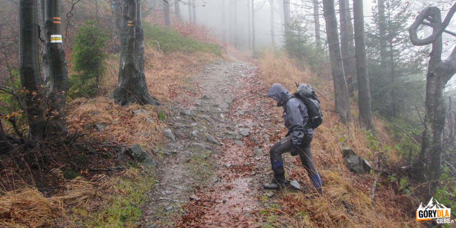 Wyjście nagrań Pieżguli (1032 m)