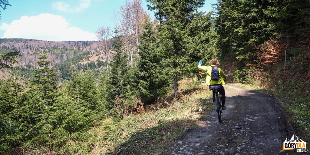 Trasa rowerowa naMogielicy