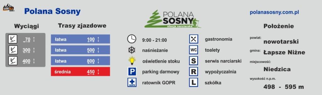 Polana Sosny Ski