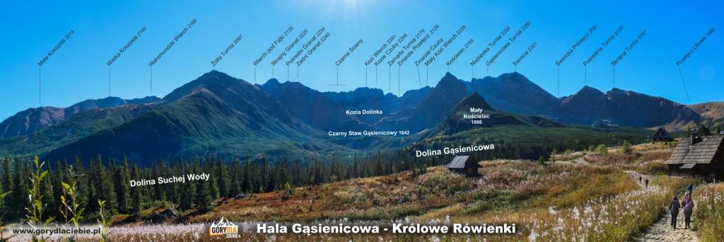Tatry panorama zHali Gąsienicowej (Królowe Rówienki)