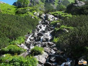 Litworowy Potok (słow. Litvorový potok)