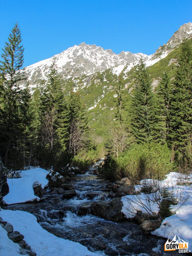 Buczynowa Strażnica i poniżej Buczynowa Siklawa widziane z Doliny Roztoki