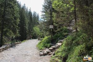 Ścieżka do jaskiń: Mylnej, Raptawickiej i Obłazkowej