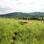 Zabezpieczone stare studnie w Beniowej