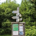 Rozwidlenie szlaków w Bukowcu