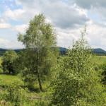 Widok na otoczenie Przełęczy Użockiej z punktu widokowego Wierszek 871 m