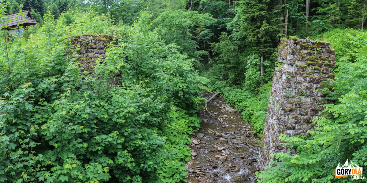 Filary mostu dawnej kolejki wąskotorowej, którafunkcjonowała napotoku Roztoka