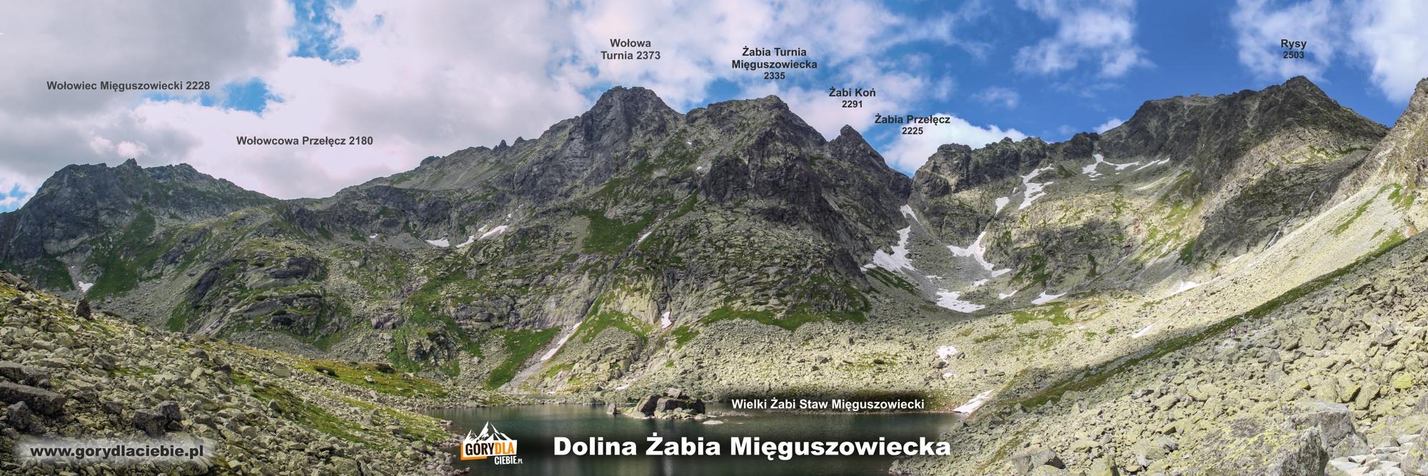 Otoczenie Doliny Żabiej Mięguszowieckiej