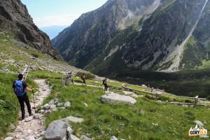 Zejście z progu Żabiej Doliny do Doliny Mięguszowieckiej