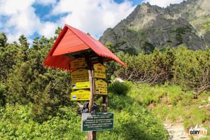 Skrzyżowanie z niebieskim szlakiem w Dolinie Mięguszowieckiej