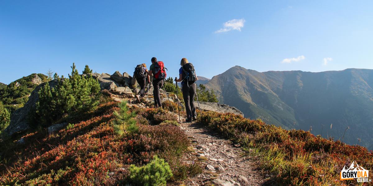 Ostredok (Małe Otargańce)- niższy szczyt, wys. 1674 m