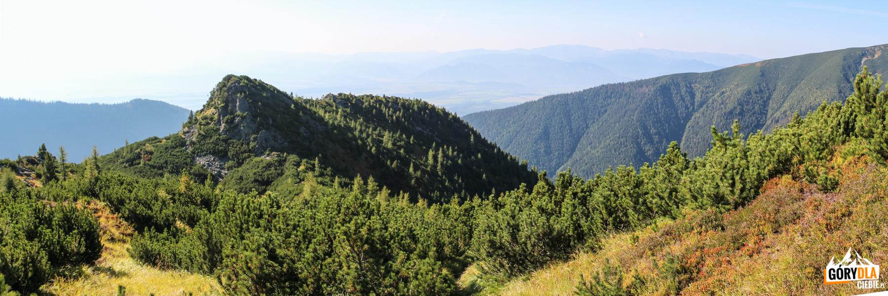 Ostredok (Małe Otargańce) dwuwierzchołkowy szczyt (wys. 1674 m i1714 m)