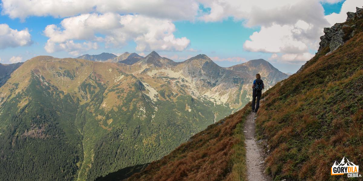 Pod szczytem Wyżniej Magury (2095 m) -w tle Smrek (2071 m), Banówkę (2178 m), Hrubą Kopę (2166 m), Rohacze – Płaczliwy (2125 m) iOstry (2088 m) iWołowiec (2064 m)