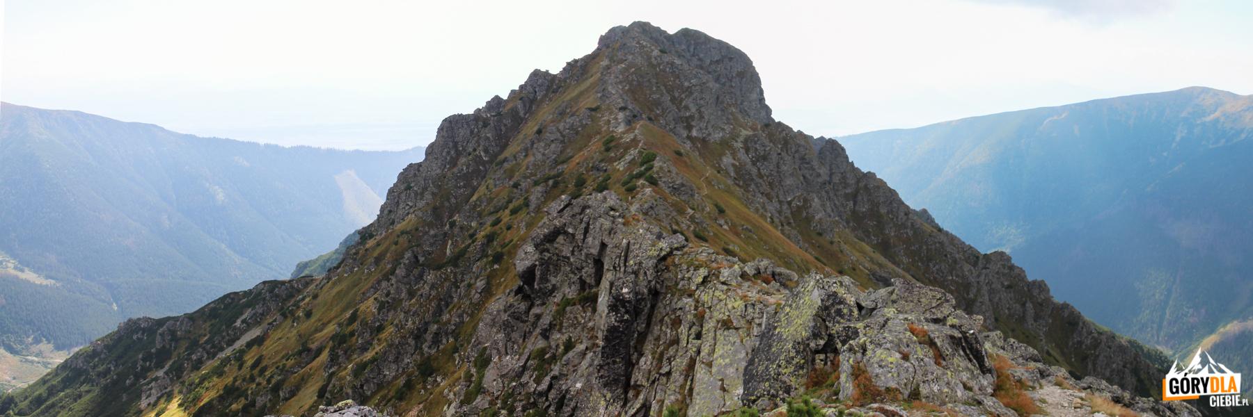 Pośrednia Magura (2050 m) widziana odstrony Wyżniej Magury (20950 m)