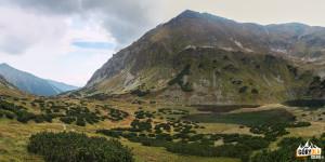 Raczkowe Stawy i górująca nad nimi Raczkowa Czuba (słow. Jakubina, 2194 m)