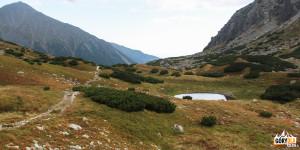 Zadnia Raczkowa Dolina