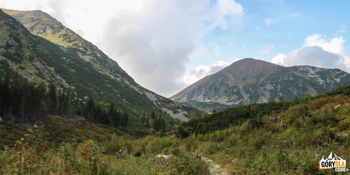 Raczkowa Dolina, nawprost Starorobociański Wierch (słow. Klin) 2175 m