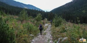 Zejście żołtym szlakiem w Raczkowej Dolinie