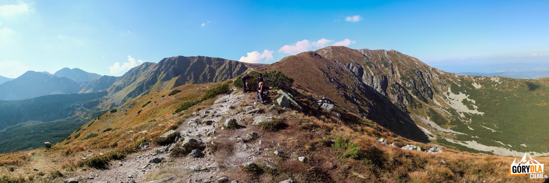 Widok zgrani Przedniego Salatyna (1815 m) naBrestową (1934 m) iSalatyn (2048 m)