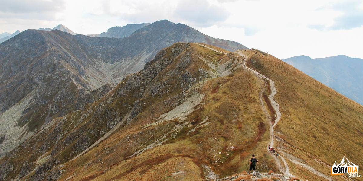 Mały Salatyn (2046 m), aza nim Spalona Kopa (2083 m), Pachoł (2167 m) icałą grań Rohaczy.