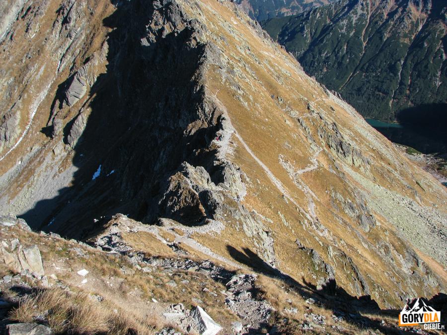 Zejście zeSzpiglasowej Przełęczy