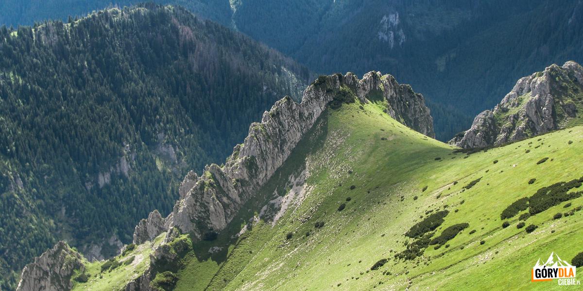 Grzebień Wysokiej Turni nad przełęczą Wysokie Siodło