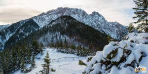 Widok spod Sarniej Skały na Czerwoną Przełęcz (1301 m), Suchy Wierch (1539 m) i Giewont