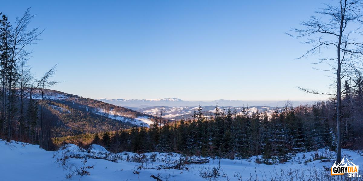 Panorama Baraniej Góry (1220 m) iSkrzycznego (1257 m) zgrani koło Krawcowej Polany