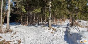 Rozwidlenie szlaków na Przełęczy Kolędówki
