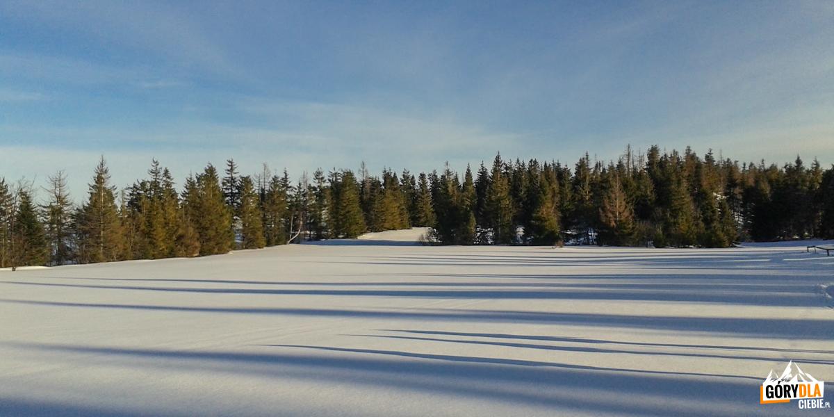Zimowa polana Wierch Lubania